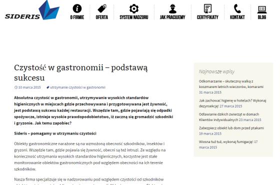 Słowni, Słowni.pl, blogi