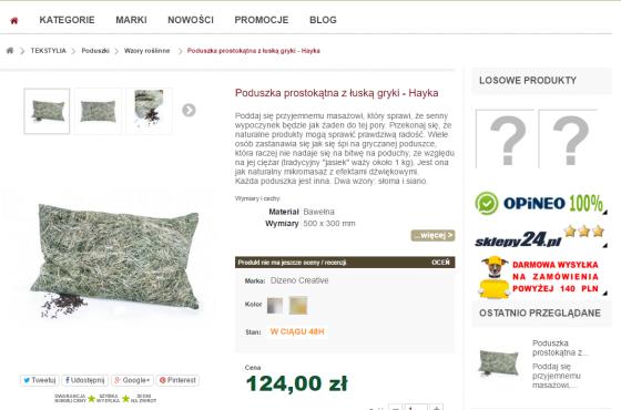 Słowni, Słowni.pl, opisy produktów